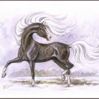 Волшебные лошади Оксаны Кукс - фото opldfBqsmTg-200x200, главная Фото , конный журнал EquiLIfe