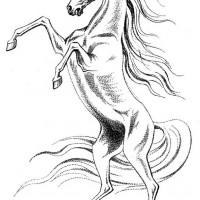 Волшебные лошади Оксаны Кукс - фото tmyd2CMavog-200x200, главная Фото , конный журнал EquiLIfe