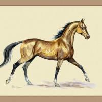 Волшебные лошади Оксаны Кукс - фото y_60a4b9da-200x200, главная Фото , конный журнал EquiLIfe