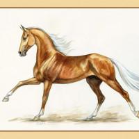Волшебные лошади Оксаны Кукс - фото y_86aa2ee2-200x200, главная Фото , конный журнал EquiLIfe