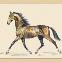 Волшебные лошади Оксаны Кукс - фото y_9507cc50-200x200, главная Фото , конный журнал EquiLIfe