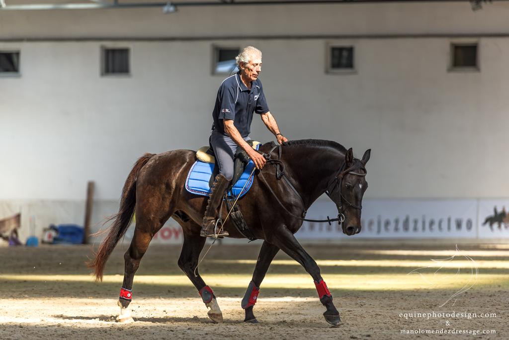 3-7 октября 2019 (Польша) Маноло Мендес - Испанской школы верховой езды (Херес) - фото DSC_0502, , конный журнал EquiLIfe