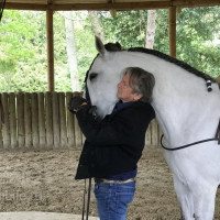 Поездка по Франции и в гости в Марио Люраши с EquiLife.ru май 2019 - фото IMG_1988_wm-200x200, , конный журнал EquiLIfe