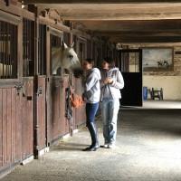 Поездка по Франции и в гости в Марио Люраши с EquiLife.ru май 2019 - фото IMG_2080_wm-200x200, , конный журнал EquiLIfe