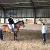 Поездка по Франции и в гости в Марио Люраши с EquiLife.ru май 2019 - фото IMG_2121_wm-200x200, , конный журнал EquiLIfe