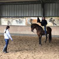 Поездка по Франции и в гости в Марио Люраши с EquiLife.ru май 2019 - фото IMG_2127_wm-200x200, , конный журнал EquiLIfe