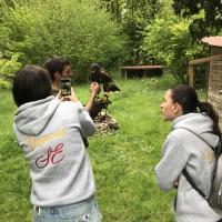 Поездка по Франции и в гости в Марио Люраши с EquiLife.ru май 2019 - фото IMG_2251_wm-200x200, , конный журнал EquiLIfe