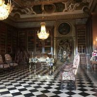 Поездка по Франции и в гости в Марио Люраши с EquiLife.ru май 2019 - фото IMG_2540_wm-200x200, , конный журнал EquiLIfe