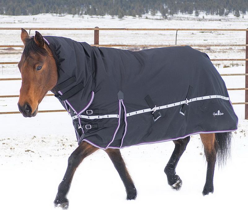 Содержание лошадей зимой - фото EQBCXBH-01, главная Здоровье лошади Содержание лошади , конный журнал EquiLIfe