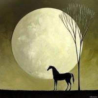 Художница Дэбби Крисвелл (Debbie Criswell) - фото TSuCkylYCwg-200x200, главная Фото , конный журнал EquiLIfe
