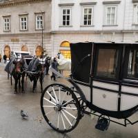 Вена декабрь 2019: Венская Школа верховой езды + Рождественская Вена - фото IMG_20191202_113450-200x200, , конный журнал EquiLIfe
