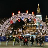 Вена декабрь 2019: Венская Школа верховой езды + Рождественская Вена - фото IMG_20191211_202001-200x200, , конный журнал EquiLIfe