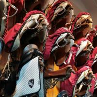Вена декабрь 2019: Венская Школа верховой езды + Рождественская Вена - фото IMG_20191213_133207-200x200, , конный журнал EquiLIfe