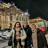 Вена декабрь 2019: Венская Школа верховой езды + Рождественская Вена - фото IMG_20191213_181006-200x200, , конный журнал EquiLIfe