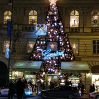 Вена декабрь 2019: Венская Школа верховой езды + Рождественская Вена - фото IMG_20191213_181418-200x200, , конный журнал EquiLIfe