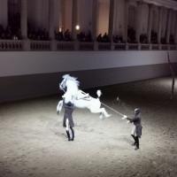 Вена декабрь 2019: Венская Школа верховой езды + Рождественская Вена - фото IMG_20191214_113750-200x200, , конный журнал EquiLIfe