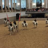 Вена декабрь 2019: Венская Школа верховой езды + Рождественская Вена - фото IMG_20191214_121155-200x200, , конный журнал EquiLIfe