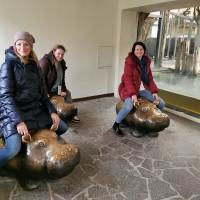 Вена декабрь 2019: Венская Школа верховой езды + Рождественская Вена - фото IMG_20191215_121237-200x200, , конный журнал EquiLIfe