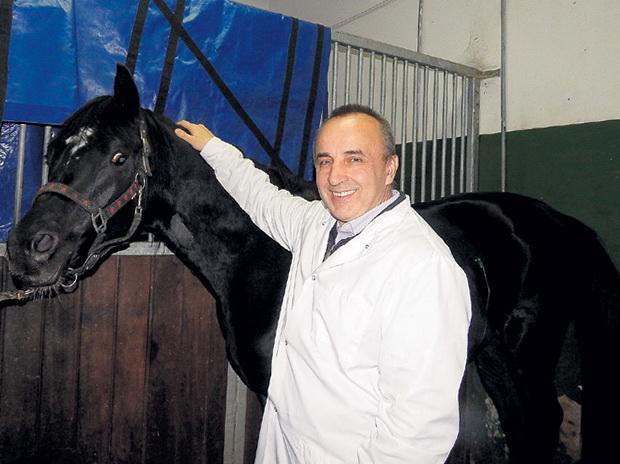 Миломир Ковач интервью о заживлении ран лошади - фото 74086417922085736, Recommendation Здоровье лошади , конный журнал EquiLIfe