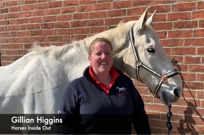 Простые упражения для пожилых лошадей - фото 06-3, главная Здоровье лошади Новости Тренинг , конный журнал EquiLIfe