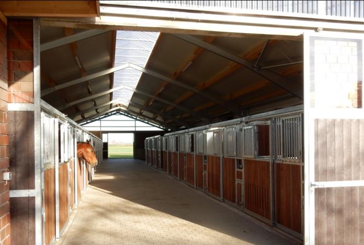 Конюшня во время самоизоляции - фото 08-1, главная Здоровье лошади Содержание лошади , конный журнал EquiLIfe