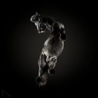 «Under-Horse» - проект Андриуса Бурбы (Andrius Burba) - фото 3-58bcf1bd2a557__880-200x200, главная Фото , конный журнал EquiLIfe