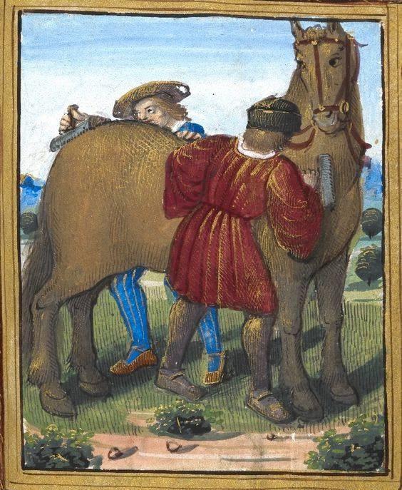 Как выглядела лошадь средневековья? - фото 02-2, главная Книги о лошадях Конные истории Фильмы про лошадей , конный журнал EquiLIfe