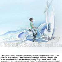 Dressage Solutions - лайфхаки для выездки - фото 14_wm-200x200, главная Фото , конный журнал EquiLIfe