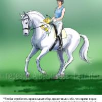 Dressage Solutions - лайфхаки для выездки - фото 15_wm-200x200, главная Фото , конный журнал EquiLIfe