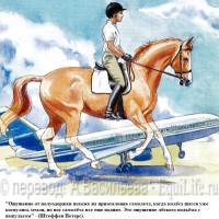 Dressage Solutions - лайфхаки для выездки - фото 16_wm-200x200, главная Фото , конный журнал EquiLIfe