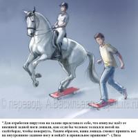 Dressage Solutions - лайфхаки для выездки - фото 19_wm-200x200, главная Фото , конный журнал EquiLIfe