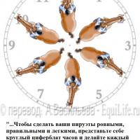 Dressage Solutions - лайфхаки для выездки - фото 1_wm-200x200, главная Фото , конный журнал EquiLIfe