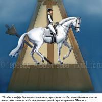 Dressage Solutions - лайфхаки для выездки - фото 20_wm-200x200, главная Фото , конный журнал EquiLIfe