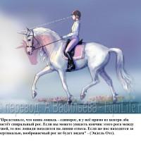 Dressage Solutions - лайфхаки для выездки - фото 2_wm-200x200, главная Фото , конный журнал EquiLIfe