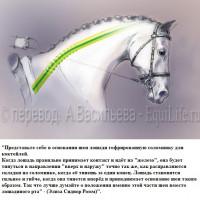 Dressage Solutions - лайфхаки для выездки - фото 3_wm-200x200, главная Фото , конный журнал EquiLIfe