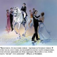 Dressage Solutions - лайфхаки для выездки - фото 4_wm-200x200, главная Фото , конный журнал EquiLIfe