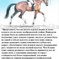 Dressage Solutions - лайфхаки для выездки - фото 6_wm-200x200, главная Фото , конный журнал EquiLIfe