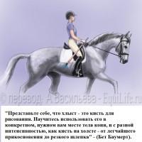 Dressage Solutions - лайфхаки для выездки - фото 9_wm-200x200, главная Фото , конный журнал EquiLIfe