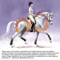 Dressage Solutions - лайфхаки для выездки (2) - фото HGxATqUQH0E_wm-200x200, главная Фото , конный журнал EquiLIfe