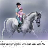Dressage Solutions - лайфхаки для выездки (2) - фото IjE4wQhEVM0_wm-200x200, главная Фото , конный журнал EquiLIfe