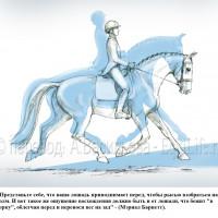 Dressage Solutions - лайфхаки для выездки (2) - фото LMvcH2HcBE_wm-200x200, главная Фото , конный журнал EquiLIfe