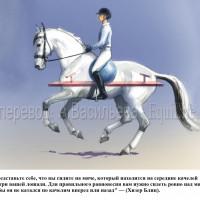 Dressage Solutions - лайфхаки для выездки (2) - фото N8dlJJet9CQ_wm-200x200, главная Фото , конный журнал EquiLIfe