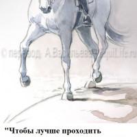 Dressage Solutions - лайфхаки для выездки (2) - фото P-z9MFv7pII_wm-200x200, главная Фото , конный журнал EquiLIfe