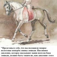 Dressage Solutions - лайфхаки для выездки (2) - фото UFPASeq7uLU_wm-200x200, главная Фото , конный журнал EquiLIfe