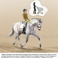 Dressage Solutions - лайфхаки для выездки (2) - фото YbdCmld1uKM_wm-200x200, главная Фото , конный журнал EquiLIfe