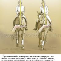 Dressage Solutions - лайфхаки для выездки (2) - фото ciMDOPhZc90_wm-200x200, главная Фото , конный журнал EquiLIfe