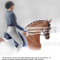 Dressage Solutions - лайфхаки для выездки (2) - фото kCb4DWjlz_M_wm-200x200, главная Фото , конный журнал EquiLIfe