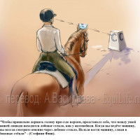 Dressage Solutions - лайфхаки для выездки (2) - фото l3f6d0pwl2o_wm-200x200, главная Фото , конный журнал EquiLIfe