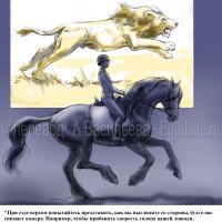 Dressage Solutions - лайфхаки для выездки (2) - фото s2zgtggLsSw_wm-200x200, главная Фото , конный журнал EquiLIfe