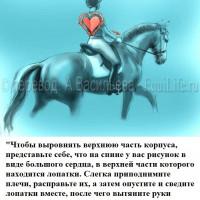 Dressage Solutions - лайфхаки для выездки (2) - фото sonfLMqrVW4_wm-200x200, главная Фото , конный журнал EquiLIfe
